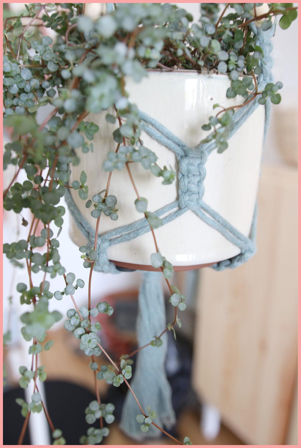 Makramee Blumenampel selber machen - Untergeschoss Anleitung Kreuzknoten